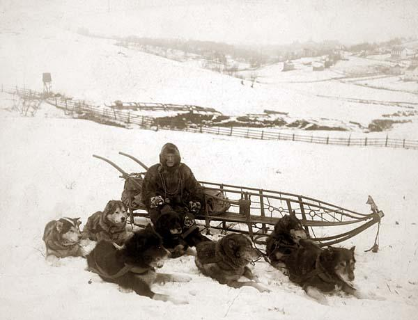 Рис. 1. Почтальон на отдыхе Аляска, 1858. Напротив, обилие - до 70